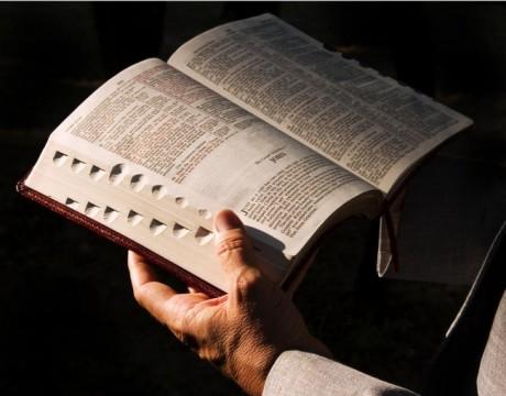 lendo-a-biblia_4260_1024x805-650x510